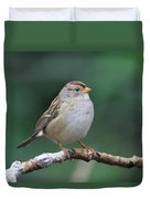 Whitecrowned Sparrow Duvet Cover
