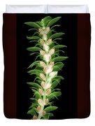 X-ray Of An Acanthus Flower Duvet Cover