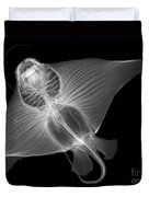 X-ray Of Cownose Ray Duvet Cover
