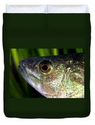 Yellow Perch Perca Flavescens Duvet Cover