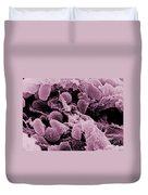 Yersinia Pestis Bacteria, Sem Duvet Cover