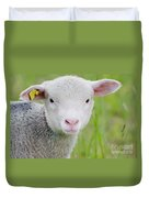 Young Sheep Duvet Cover
