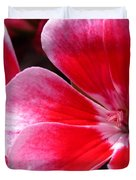 Zonal Geranium Named Candy Fantasy Kiss Duvet Cover