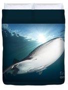 Whale Shark Feeding Under Fishing Duvet Cover