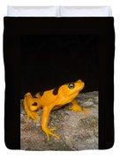 Harlequin Toad Duvet Cover