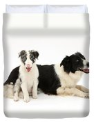 Border Collies Duvet Cover
