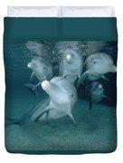 Bottlenose Dolphin Underwater Pair Duvet Cover