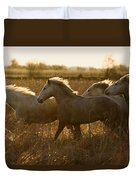 Camargue Horse Equus Caballus Group Duvet Cover