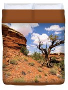 Canyonlands Needles District Duvet Cover