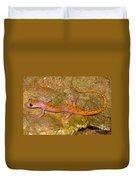 Cave Salamander Duvet Cover by Dante Fenolio