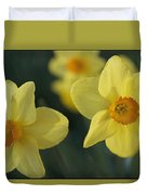 Close View Of Early Spring Daffodils Duvet Cover
