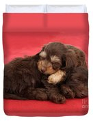 Doxie-doodle Puppies Duvet Cover