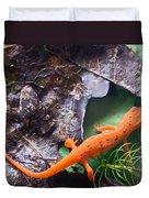 Easterm Newt Nnotophthalmus Viridescens 2 Duvet Cover