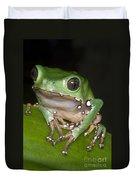 Giant Monkey Frog Duvet Cover