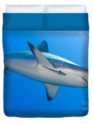 Gray Reef Shark With Remora, Papua New Duvet Cover