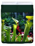 Sarracenia Flava Duvet Cover