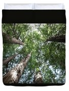 Redwoods Sequoia Sempervirens Duvet Cover