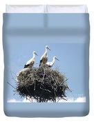 3 Storks In The Nest. Lithuania Duvet Cover