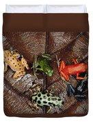 Strawberry Poison Dart Frog Dendrobates Duvet Cover