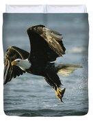 An American Bald Eagle In Flight Duvet Cover