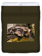 Crowned Tree Frog Duvet Cover