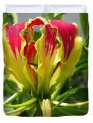 Gloriosa Named Rothschildiana Duvet Cover