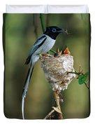 Madagascar Paradise Flycatcher Duvet Cover