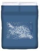 4 Phase Contrast- Candida Albicans Duvet Cover