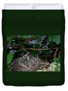 Robin Nestlings Duvet Cover