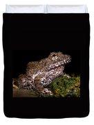 Rusty Robber Frog Duvet Cover