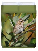 Savannah Sparrow Duvet Cover