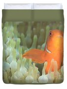 Spinecheek Anemonefish In Anemone Duvet Cover