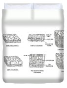 Types Of Epithelial Cells Duvet Cover