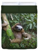 Brown-throated Three-toed Sloth Duvet Cover