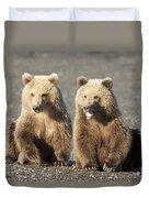 Grizzly Bear Ursus Arctos Horribilis Duvet Cover