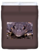 Mexican Burrowing Toad Duvet Cover