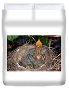 Robin Nestlings Duvet Cover