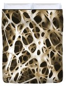Sem Of Human Shin Bone Duvet Cover