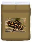 Crowned Poison Frog Duvet Cover