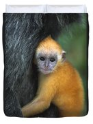 Silvered Leaf Monkey Trachypithecus Duvet Cover