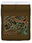 Thermophile Bacteria Duvet Cover