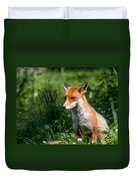 A British Red Fox Duvet Cover