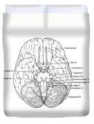 Illustration Of Cranial Nerves Duvet Cover