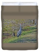 9- Sandhill Crane Duvet Cover