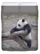 A Baby Panda Plays On A Branch Duvet Cover