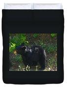 A Bear Cub Duvet Cover