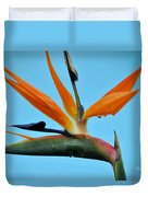 A Bird By The Pool Duvet Cover