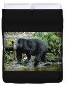 A Black Bear, Ursus Americanus, Walks Duvet Cover