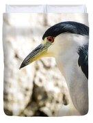 A Black-crowned Night Heron  Duvet Cover