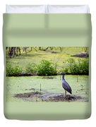 A Blue Bird In A Wetland -yellow-crowned Night Heron  Duvet Cover